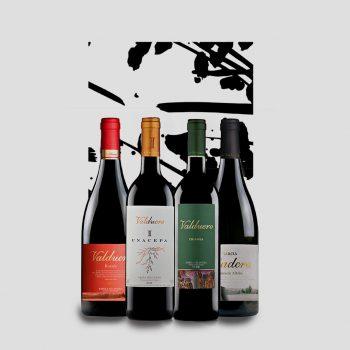 Botellas de vino. Evento de maridaje
